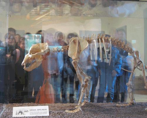 Crocetta di Montello Museum